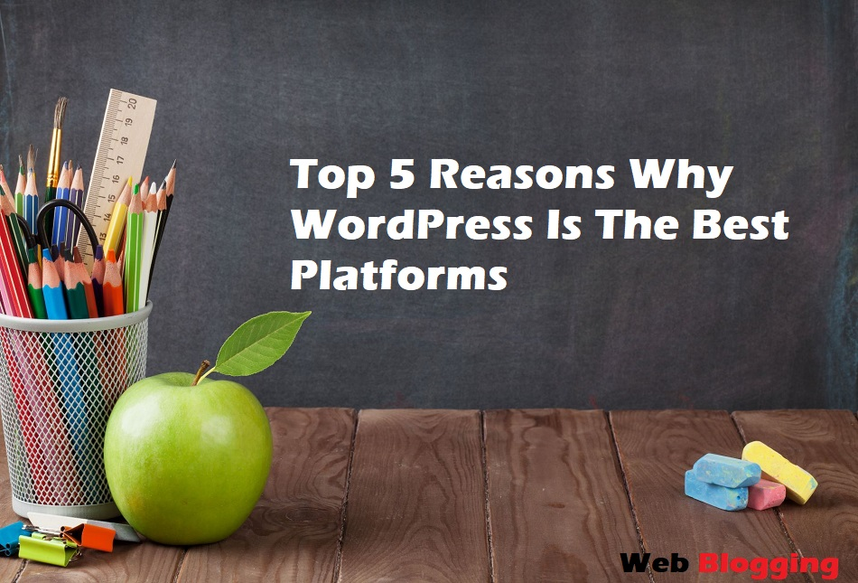 Top 5 Reasons Why WordPress Is The Best Platforms